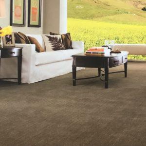 residential carpeting in miami